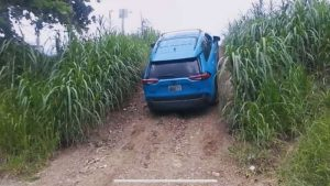 2019 Toyota RAV4 Reviews News Videos